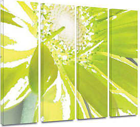 ArtWall Herb Dickinson Gerber Time IV 4-Piece Gallery-Wrapped Canvas Artwork, 36 by 48-Inch