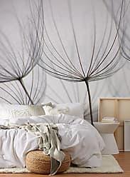 Adzif Dandelion wallpaper