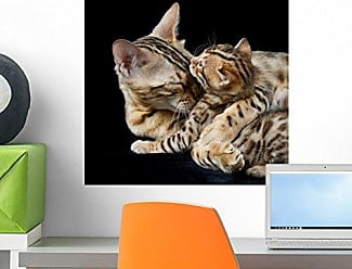 Wallmonkeys Bengal Cat and Kitten Wall Decal Peel and Stick Graphic WM3223 (18 in H x 18 in W)