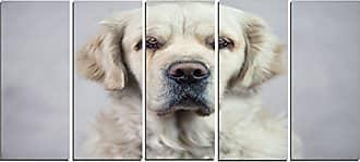 DESIGN ART Designart PT13334-60-28 Sad Looking Beautiful Dog - Animal Artwork on Canvas 28 x 60 x 2