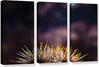 ArtWall Dean Uhlinger 3 Piece Blossom Glow Gallery-Wrapped Canvas Set 36 by 54