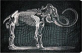 Hatcher & Ethan Mammoth Canvas Wall Art - HE13685_24X16_CANV_XHD_HE