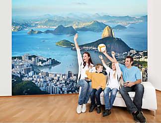 Ideal Decor Rio Wall Mural - DM145