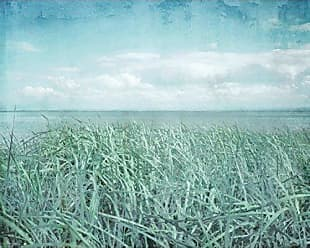 Portfolio Canvas Decor Portfolio Canvas Decor Portfolio Décor Canvas Print Wall Art-Textured Sea Grass by Hal Halli Stretched and Wrapped, Ready to Hang-16x20, 16x20
