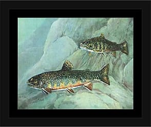 EAZL Two Brook Trout Fish Water Lake Lodge Painting Blue & Green, Framed Canvas Art by Pied Piper Creative