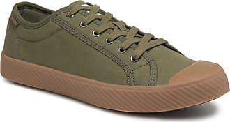 Grün Palladium Für Herren Sneaker Og Pallaphoenix Cvs f4vqYxwUr4