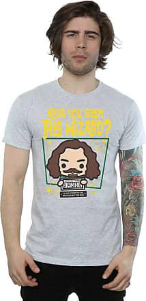 Harry Potter Mens Sirius Black Azkaban Junior T-Shirt Large Sport Grey