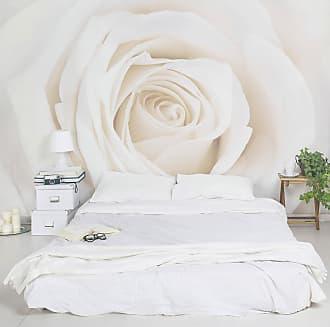 Bilderwelten home24 Papier peint Pretty White Rose