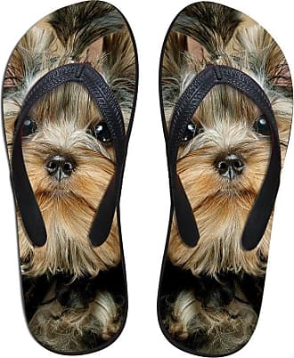 Coloranimal Cute 3D Yorkshire Terrier Printed Flip Flops Soft Rubber Shoe Footwear EU39