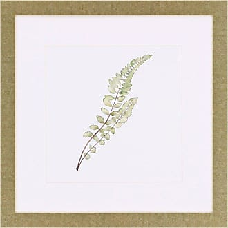 Paragon Picture Gallery Paragon Watercolor Leaf Study I Framed Wall Art - 3155