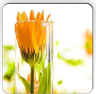 Rikki Knight Rikki Knight Gerbera in Glass Design Square Fridge Magnet, Orange