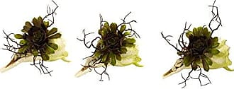 Nearly Natural 4840-S3 Wispy Succulent with Seashell, Set of 3
