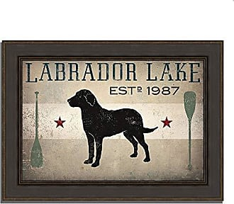Tangletown Fine Art Labrador Lake by Ryan Fowler Framed Art, Black, Blue, Gray