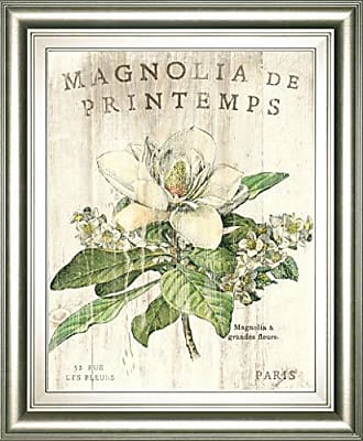Classy Art Magnolia De Printemps by Sue Schlabach Framed Print Wall Art, Off Off White