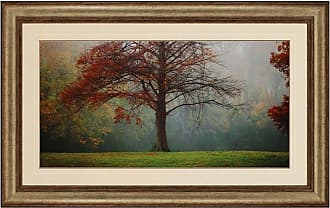 Paragon Picture Gallery Paragon Late Autumn Morning Framed Wall Art - 1030
