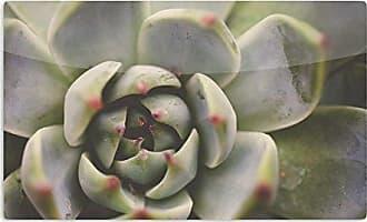 KESS InHouse Debbra ObertanecDesert Succulent Green Artistic Aluminum Magnet, 2 by 3, Multicolor