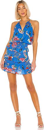 Parker Karolina Dress in Blue