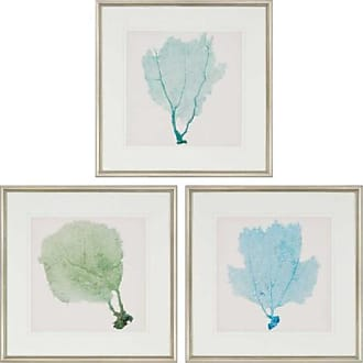 Paragon Picture Gallery Sea Fan I Framed Wall Art - Set of 3