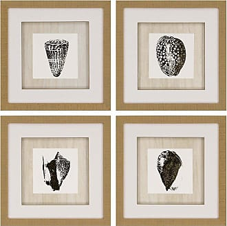 Paragon Picture Gallery Gold Foil Shell Wall Art - Set of 4 - 3933