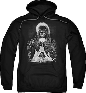 Popfunk Labyrinth Castle Unisex Adult Pull-Over Hoodie for Men and Women Black