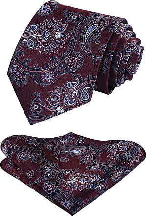 Hisdern Extra Long Floral Paisley Tie Handkerchief Mens Necktie & Pocket Square Set