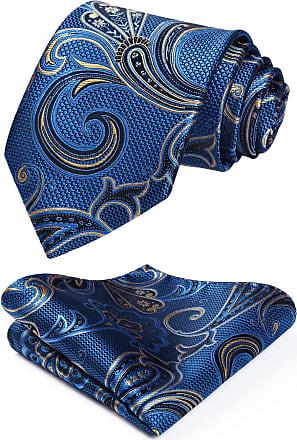 Hisdern Mens Paisley Necktie Handkerchief Wedding Party Tie Pocket Square Set