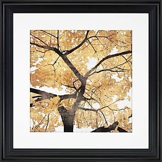 Paragon Picture Gallery Golden Leaves Framed Wall Art - 7028