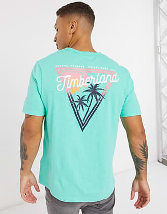 Timberland River back print t-shirt in green
