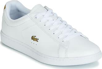 05f05ca3c9cb Chaussures Lacoste® : Achetez jusqu''à −68% | Stylight