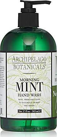 Archipelago Botanicals Archipelago Morning Mint Hand Wash, 17 Fl Oz
