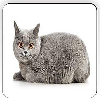 Rikki Knight Rikki Knight Blue British Shorthair Cat with Bright Orange Eyes Design Square Fridge Magnet
