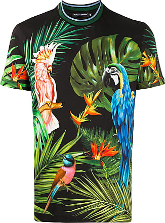 Dolce & Gabbana Camiseta preta com estampa de papagaio - Preto