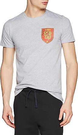 Harry Potter Mens House Gryffindor T - Shirt, Grey (Sports Grey), Medium