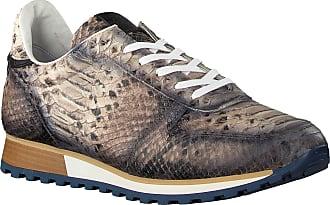 Giorgio Taupe Giorgio Sneaker He09514