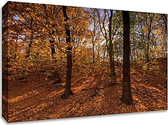 Tangletown Fine Art Sun Spackled Wood Gallery Wrap Canvas Gold/Brown