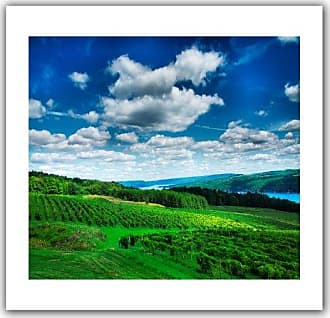 ArtWall Vineyard and Lake Unwrapped Canvas Art by Steven Ainsworth, 36 by 52-Inch