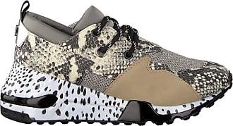 48db1d5d3e8 Steve Madden Beige Steve Madden Sneakers Cliff Sneaker
