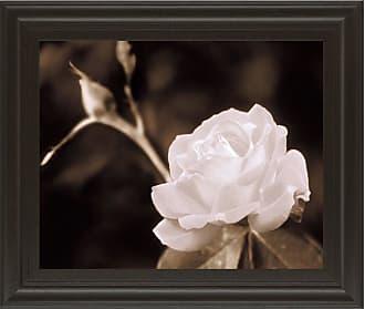 Classy Art Rose Sophistication Framed Wall Art - 26W x 22H in. - 4702