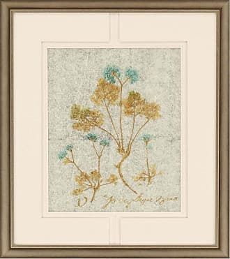 Paragon Picture Gallery Botanicals III by Jardine Wall Art - 2412