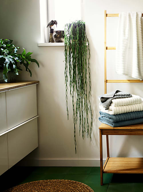 Pflanzen im Bad: Darauf musst du achten | Stylight