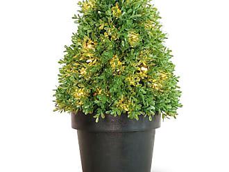 National Tree Company Boxwood Pre-lit Topiary Tree with Grower Pot, Size: 18 in. - LBX4-300-15-1