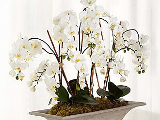 John-Richard Armature Orchids Faux-Floral Arrangement
