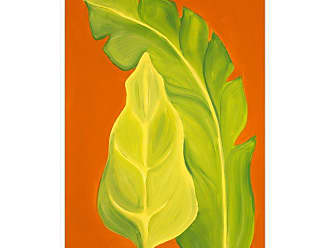 Ptm Images Life in the Tropics II Framed Canvas Wall Art - 9-113458