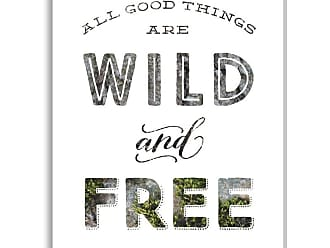 Gallery Direct Wild and Free Nature Indoor/Outdoor Canvas Print by Shelley Weir, Size: Medium - NE73548