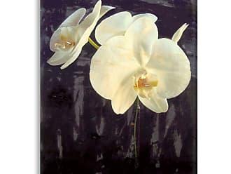 Gallery Direct Midnight Garden I Indoor/Outdoor Canvas Print by Sara Abbott, Size: Medium - NE73328