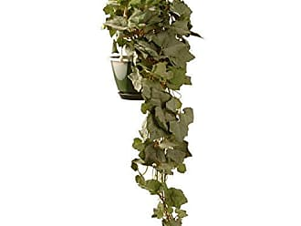 National Tree Company National Tree 25 Inch Garden Accents Hanging Green Grape Plant (GAHG30-25G)