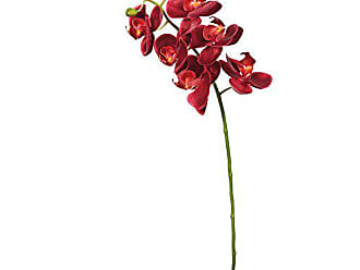 Vickerman FA172202 Everyday Orchid Stem