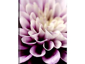 Great Big Canvas Purple Dahlia Detail by Mike Moats Canvas Wall Art - MM1041_24_16X24_NONE