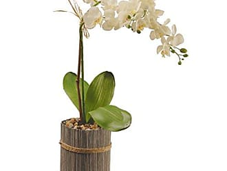 National Tree Company National Tree 20 Inch Garden Accents White Potted Orchid (GAPF30-20W)