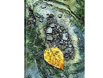 Great Big Canvas Golden Leaf in Emerald Stream Canvas Wall Art - MM1141_24_16X24_NONE